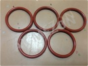fuel_injector_seal_ring_vg1540080018a_1